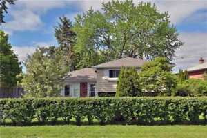 Beautiful South West Oakville Home for Lease
