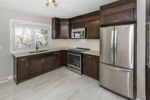 Renovated 3 Bedroom House In Mayland Heights
