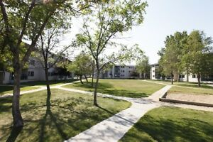 Move-in ready NOW! 1 Bedroom apartment - lots of storage!!