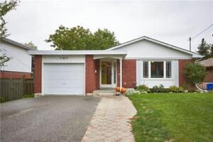 1 +1 Walkout Basement Apartment for Lease
