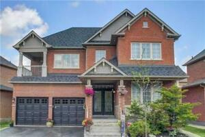 Beautiful/ Large Basement Apartment for Lease In Richmond Hill