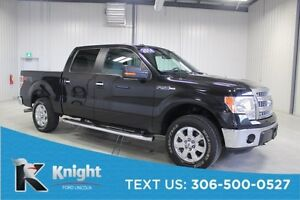 2014 Ford F-150 XLT XTR Tailgate Step