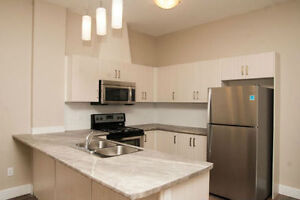 One Bedroom Luxury Rental ! Brand New Building! Oct 1st !