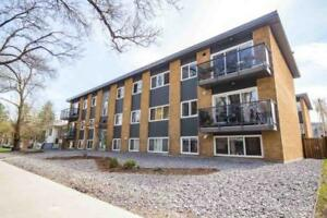 1bd 1ba Condo for Sale in Edmonton