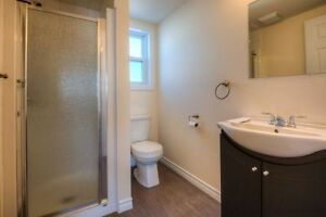 Individual Bedrooms or Group Rates for Students! 5 bed/2 bath Kitchener / Waterloo Kitchener Area image 6