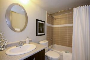 Sublease- One Bedroom Apartment for only $1185, + 1 Month FREE Kitchener / Waterloo Kitchener Area image 4