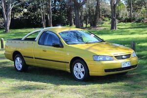 2003 Ford Falcon BA XL SE Acid Rush 4 Speed Auto Seq Sportshift Utility Port Macquarie Port Macquarie City Preview