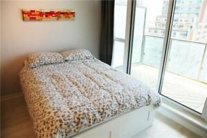 Bright &Spacious Studio Unit In The Heart Of Liberty Village