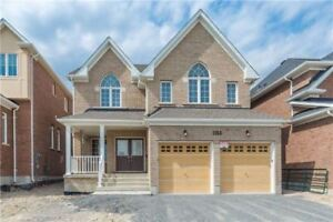 4 Bedroom Home for Rent in Oshawa