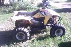 trail blazer 250 great for young kids