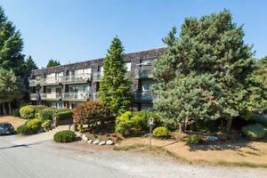 2 Bdrm available at 7425 18th Avenue, Burnaby