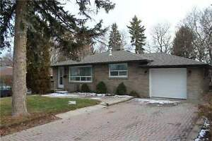 House including separate entrance Basement for Rent in Newmarket