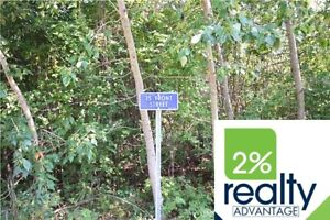 Buffalo Lake-White Sands Vacant Lot-By 2% Realty Inc.
