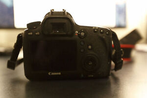 Canon 6D in excellent shape, and Canon L Series 24-105mm F4
