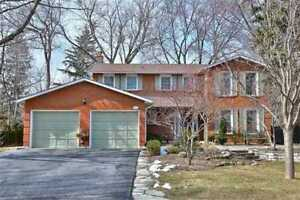 House for Rent in Mississauga Rd & Qew Neighbourhood.