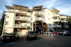 3 BEDROOMS CONDO INCLUDING UTILITIES IN ELLERSELIE