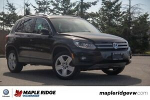 2016 Volkswagen Tiguan Highline NO ACCIDENTS, LOCAL CAR, WELL MA