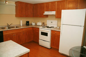 Bright & Clean 1 Bedroom Apartment For Rent In St Catharines
