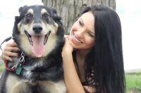 AMI-TAXI: Transport pour chiens, chats et petits animaux