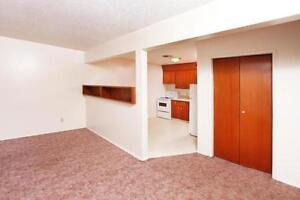 Amazing 1 bedroom with storage!