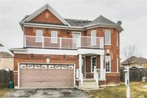 47 Ball Cres House For Sale!!