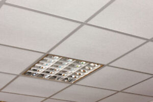 Super Sale on Ceiling Grids -- 10% OFF & Free Eye Lags