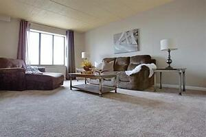 Large Apartment - Bright - Downtown - call us today! Windsor Region Ontario image 2
