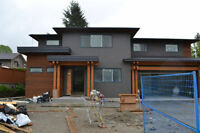 Foucs stucco and exteriors Top quality 50%off 4039033289