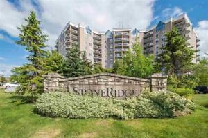 Lovely 1 Bedroom Condo, 202 Walter Havill Drive