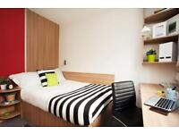 500 bedrooms in Lebus 1, N179FD, London, United Kingdom