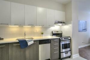 Huge renovated suite! Near McGill & Mt Royal Park