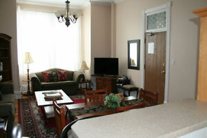 Furnished executive 2 bedroom apartment