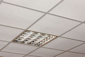 Super Sale on Ceiling Grids 10% OFF & Free Eye Lags (6030 50 St)