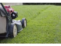 Grass cutting and weed treating service