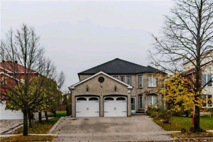 House for rent by McCowan rd & Steeles ave Markham/Scarborough
