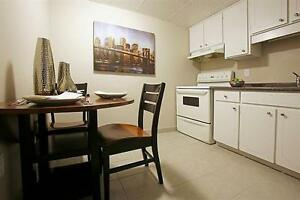 Large Apartment - Bright - Downtown - call us today!