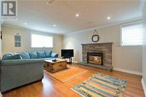 Above Ground 1-Bedroom Basement Apartment in Richmond Hill