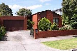 We have great double rooms coming up in our house in 11 Emma St. Caulfield Glen Eira Area Preview