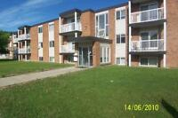COME AND SEE THIS 2 BEDROOM APARTMENT AT THE ATHABASCAN
