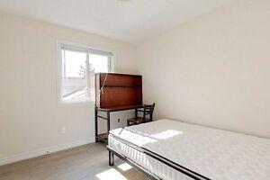 5 Bedroom Apartment unit for Rent in Updated Waterloo Bldg Kitchener / Waterloo Kitchener Area image 8