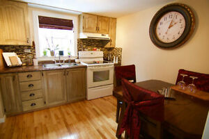 Cozy Downtown 2 bedroom house for rent !!
