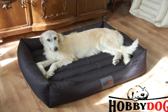 Dog Bed Sofa XXXL Extra Large XXL Big Washable Pet Brand HobbyDog Thick Mattress