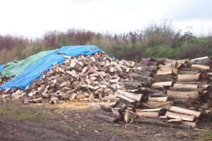 Firewood $235 + del We only sell 1+yr dried hardwood. 209-4685