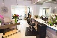 Apprentice and licensed stylist wanted