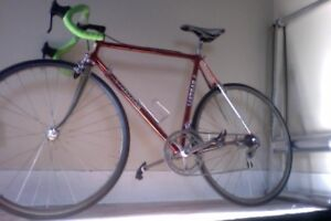 "Bartali ""Professional""  54cm racing bicycle."