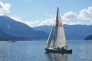 Lightning 19 - Classic sailboat with trailer!