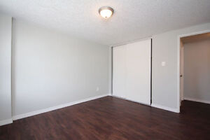 Newly Renovated 2 Bedroom (All Inclusive) Unit in Quiet Building Cambridge Kitchener Area image 8