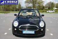 MINI CABRIO One Leder PDC Salt-Paket