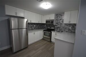 Beautiful 1 Bedroom Basement Apt. - Available Feb 1