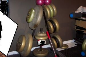 Full set of weights, bars, benches